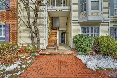 Jersey City Condo/Townhouse For Sale: 20 Juniper Street