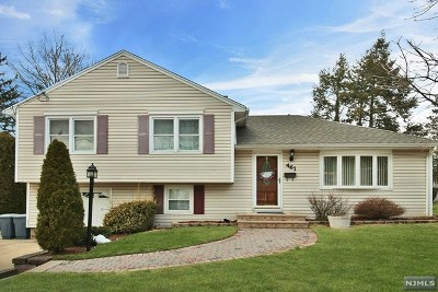 New Milford Single Family Home For Sale: 461 Henley Avenue