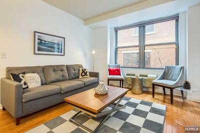 Jersey City Condo/Townhouse For Sale: 149 Essex Street #2e