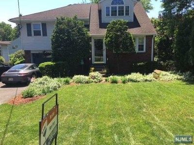 Ridgewood Single Family Home For Sale: 396 Racetrack Road