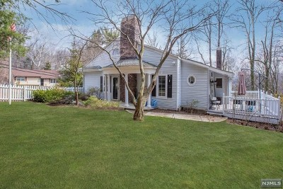 Cresskill Single Family Home For Sale: 196 Madison Avenue