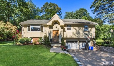 Cresskill Single Family Home For Sale: 31 7th Street