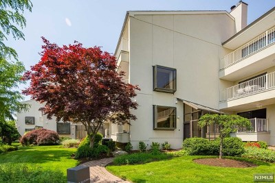 Edgewater Condo/Townhouse For Sale: 1225 River Road #11b