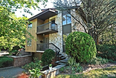 Englewood Condo/Townhouse For Sale: 235a East Palisade Avenue #A