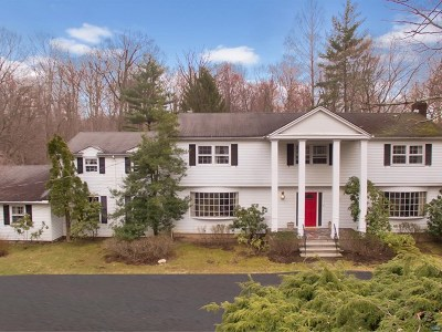 Saddle River Single Family Home For Sale: 66 Fox Hedge Road