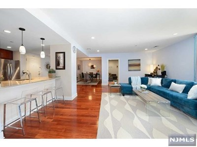 Jersey City Condo/Townhouse For Sale: 201 Marin Boulevard #416