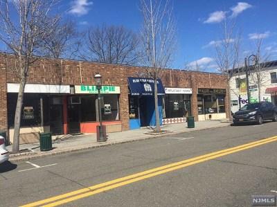 Tenafly Commercial For Sale: 33 Washington Street