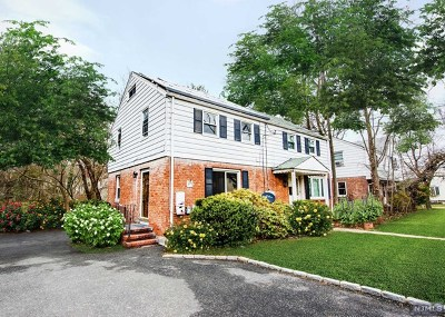 Tenafly Single Family Home For Sale: 271 Tenafly Road