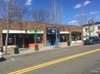 Tenafly Commercial For Sale: 33 Washington Street