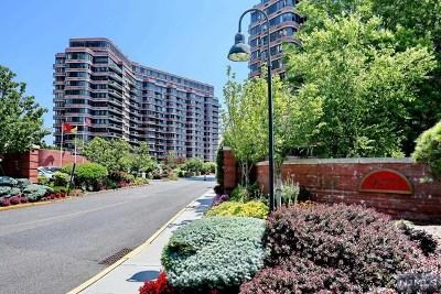 Cliffside Park Condo/Townhouse For Sale: 100 Winston Drive #N 9k