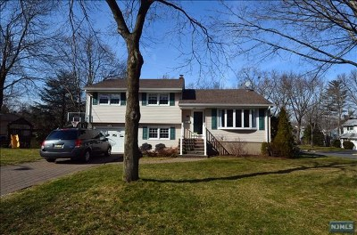 Cresskill Single Family Home For Sale: 14 Wright Place