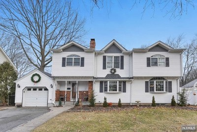 Waldwick Single Family Home For Sale: 17 Cathy Lane