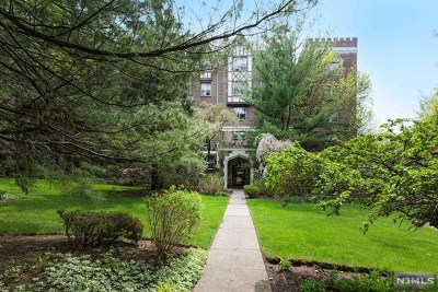 Englewood Condo/Townhouse For Sale: 100 East Palisade Avenue #D42