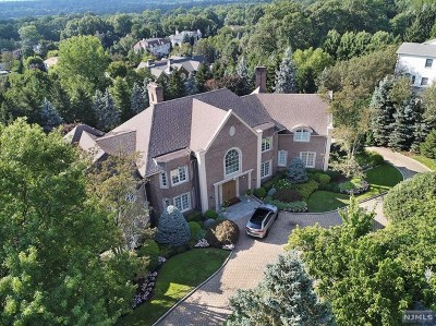 Cresskill Single Family Home For Sale: 97 Hoover Drive