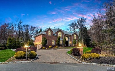 Upper Saddle River Single Family Home For Sale: 27 Spook Ridge Road