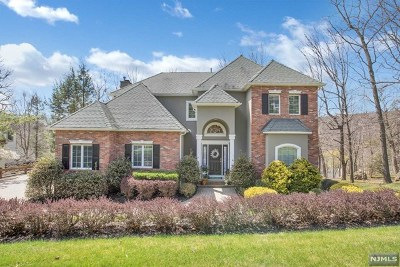 Mahwah Single Family Home For Sale: 10 Village Drive