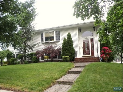 Fair Lawn Single Family Home For Sale: 13-39 Comerford Place