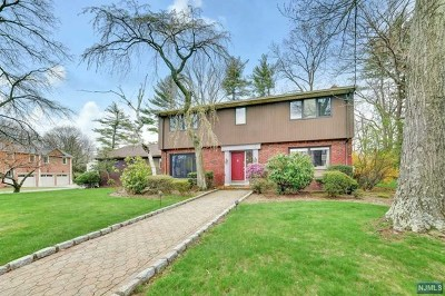 Englewood Cliffs Single Family Home For Sale: 58 Jean Drive