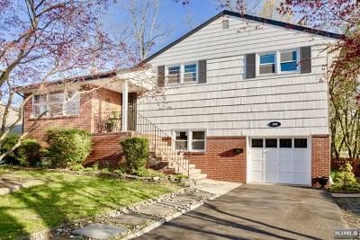Hillsdale Single Family Home For Sale: 209 Knickerbocker Avenue