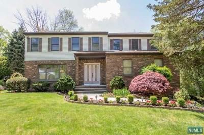 Cresskill Single Family Home For Sale: 10 Hillside Avenue