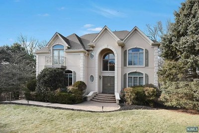 Mahwah Single Family Home For Sale: 65 Village Drive