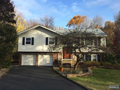 Montvale Single Family Home For Sale: 29 Ladik Place