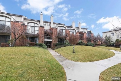 Teaneck Condo/Townhouse For Sale: 5 Sinclair Court