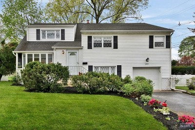 Teaneck Single Family Home For Sale: 790 Dearborn Street