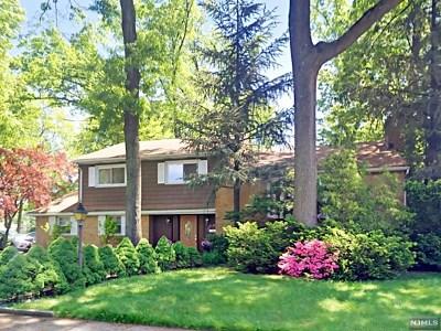 Fair Lawn Single Family Home For Sale: 27 Van Saun Place