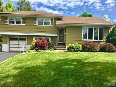 Paramus Single Family Home For Sale: 65 Hemlock Drive