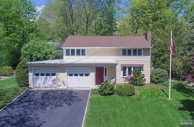 Ridgewood Single Family Home For Sale: 966 Andover Terrace