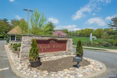 Mahwah Condo/Townhouse For Sale: 154 Fisher Road