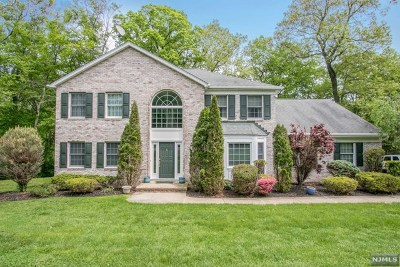 Woodcliff Lake Single Family Home For Sale: 10 Stacey Lane