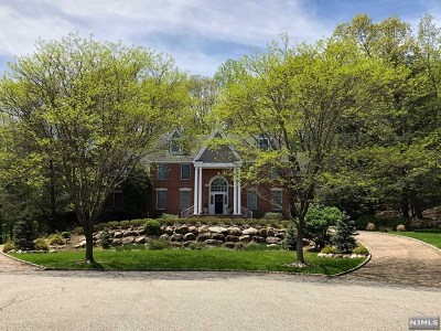 Upper Saddle River Single Family Home For Sale: 18 Sunflower Drive