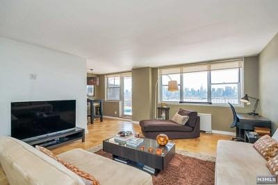 Rental For Rent: 6040 Boulevard East #3f