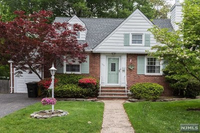 New Milford Single Family Home For Sale: 153 South Park Drive
