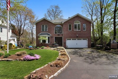 Cresskill Single Family Home For Sale: 168 9th Street