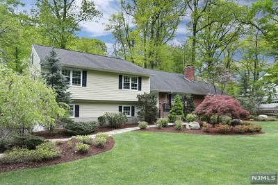 Franklin Lakes Single Family Home For Sale: 255 Gregory Road
