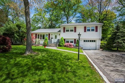 Bergenfield Single Family Home For Sale: 93 Brookview Terrace