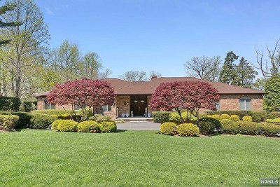Cresskill Single Family Home For Sale: 100 Jackson Drive