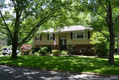 Montvale Single Family Home For Sale: 3 Antrim Road