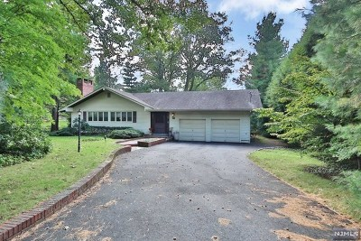 Alpine NJ Single Family Home For Sale: $999,999
