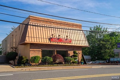 Tenafly Commercial For Sale: 255 County Road