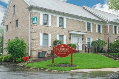 Park Ridge Condo/Townhouse For Sale: 143 South Maple Avenue #B