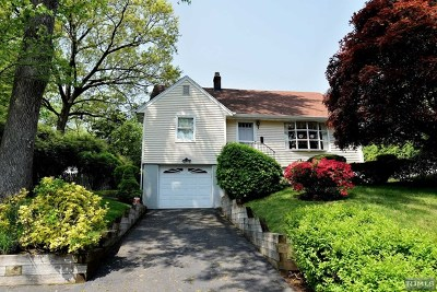 Cresskill Single Family Home For Sale: 217 9th Street