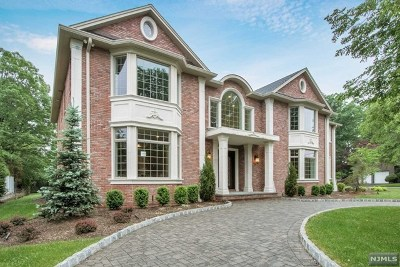 Englewood Cliffs Single Family Home For Sale: 54 Jean Drive