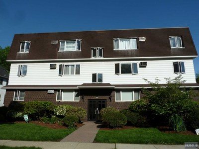 Rutherford NJ Condo/Townhouse For Sale: $425,000