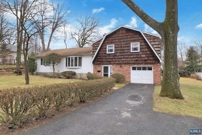 Park Ridge Single Family Home For Sale: 42 Oak Avenue
