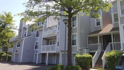 Englewood Condo/Townhouse For Sale: 29 Regency Circle
