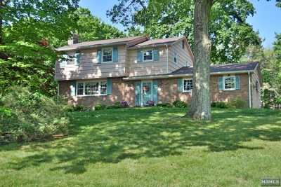 Upper Saddle River Single Family Home For Sale: 40 Sparrowbush Road